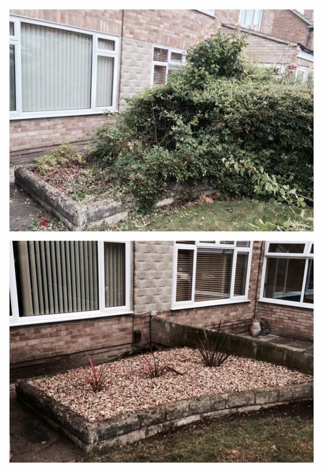 Garden tidy up 4