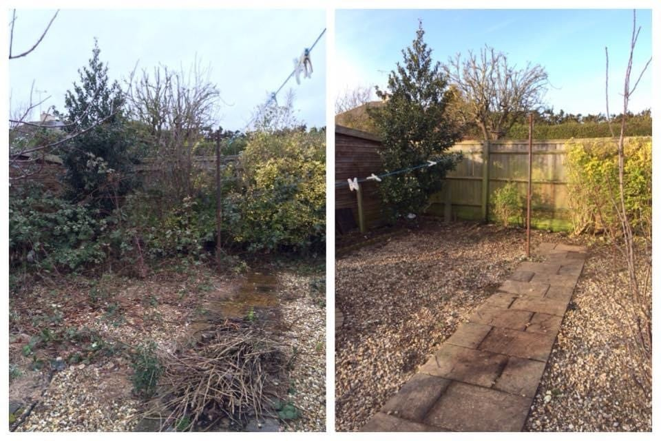 Garden tidy up1