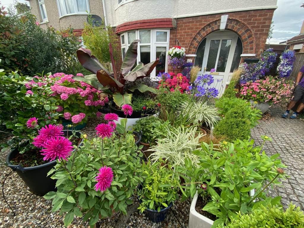 Home Garden Front Garden