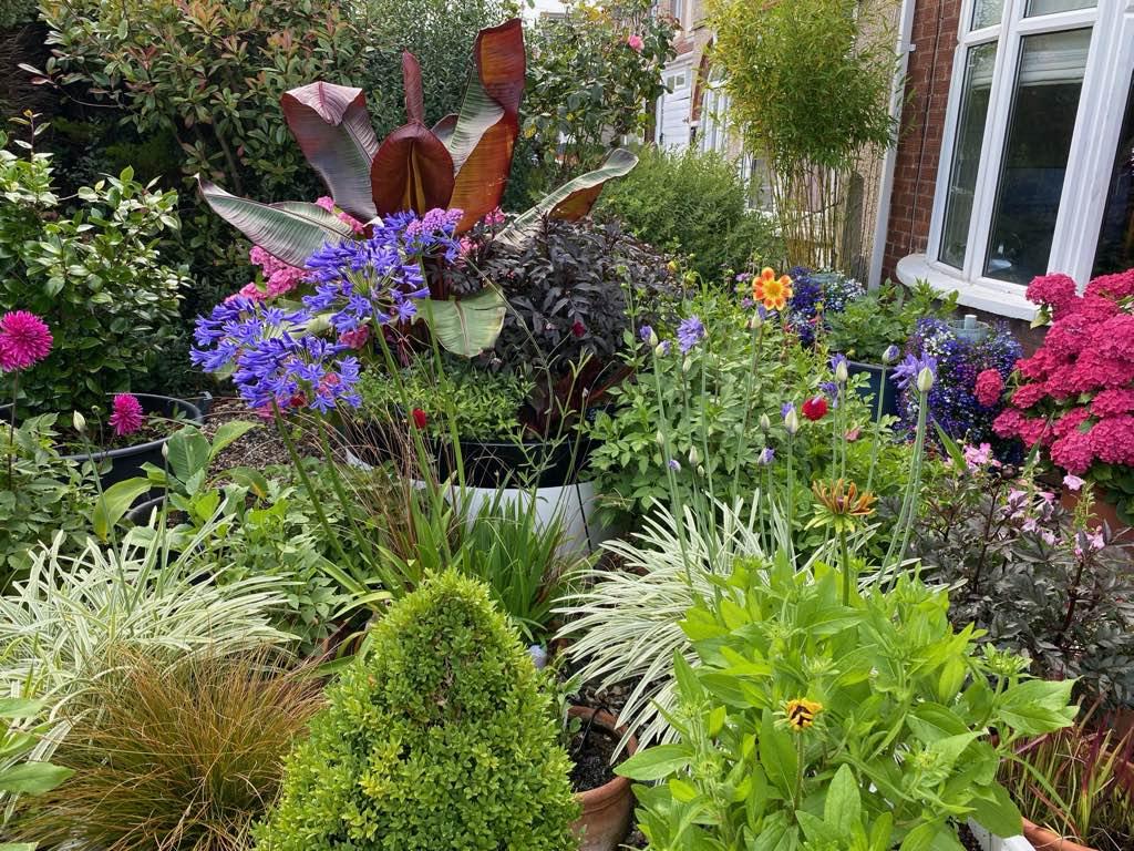 Home Garden Front Pots